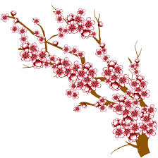 cherry blossom tree branch drawing at getdrawings com free for