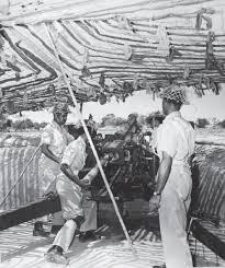 Flag Of Pakistan Pic Rare Photos From 1965 Pakistan India War Pakistan Geo Tv