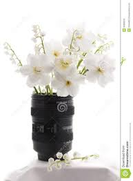 Flower Arrangements For Tall Vases Chic White Flower Vase 123 Tall Vase White Flower Arrangements