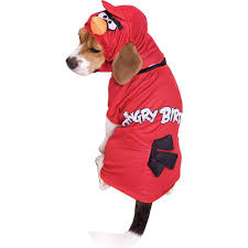 cat halloween costumes party city amazon com paper magic angry birds red bird dog pet halloween