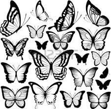 collection of 25 black butterfly silhouettes isolated on