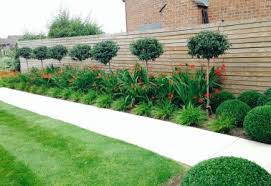 Garden Border Ideas Uk Planting Grounds Care And Maintenance Services Jhps