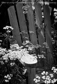 Empty Chair Poem Vermont Poet Toni Ortner Feminist Poet Contemporary Poetry