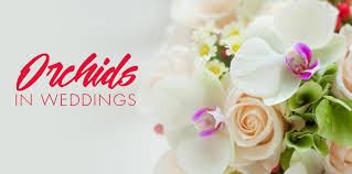 wedding flowers orchids orchid wedding flowers archives rebel hill wedding
