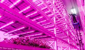 philips led grow light 100w ufo led grow light led high bay light ufo 100w smd 5050 60d led