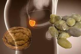 alimenti prostata come salvaguardare la prostata ecplanet