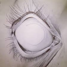 69 best amy gration u2022 sketches paintings images on pinterest