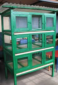 Backyard Quail Pens And Quail Housing by 17 Best Images About Quail On Pinterest Quails Funny Facts And