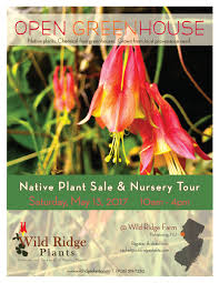 american native plants nursery upcoming events wild ridge plants u2013 spring open greenhouse