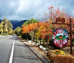 7 of the best apple orchards in southern california