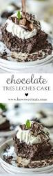 chocolate tres leches cake recipe chocolate tres leches cake
