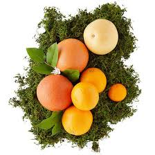 edible fruit basket fruit baskets better homes gardens