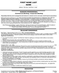 Resume Samples For Banking Sector by Top Banking Resume Templates U0026 Samples