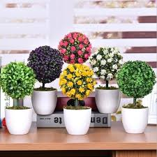 Small Desk Plants Office Desk Plants Office Plants For Desk Small Bonsai Office Desk