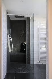 Open Showers 11 Best Bathroom Remodel Images On Pinterest Bathroom Ideas