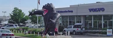 gorilla balloon spot promotions golden co advertising