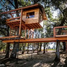 Tree Houses Around The World O2 Treehouse