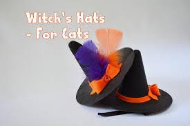 halloween hats halloween hat for cat u0027witch u0027s hat u0027 halloween costumes for cat