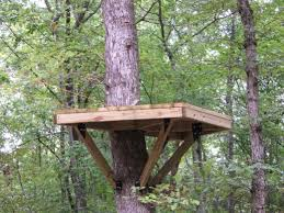 platform for the the zip line treehouse outdoor playspaces