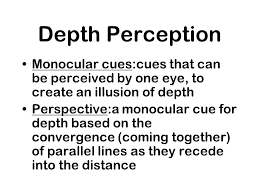 Blind In One Eye Depth Perception Perception Chapter 6 Perception Selective Attention Perceptual