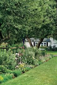 9 privacy landscaping ideas u2014 garden screening ideas
