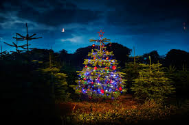 how to hang outdoor christmas lights help advice diy at bq real