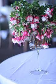 Wedding Flowers Denver Luxury Centerpiece Fuchsia Flowers Tall Centerpiece Colorado