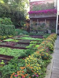 inspiration pour potager urbain vegetable garden gardens and