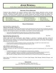 Resume Summary Examples Sales Example Of A Sales Resume Territory Sales Manager Resume Samples