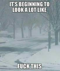 Hate Snow Meme - stock up for the snow storm funny pinterest storms snow