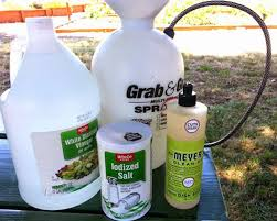 How To Remove Weeds From Patio Hands Down The Best Way To Kill Weeds And It U0027s Not Roundup