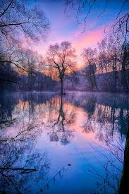 best 25 beautiful pictures ideas on nature pretty