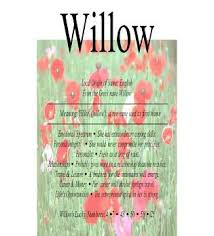 willow means slender nydob com