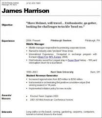 Business Owner Resume Example by Resume Examples For Hairstylist Business Resume Examples Business