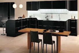 Black Kitchen Decorating Ideas Pictures Black Kitchen Designs Free Home Designs Photos