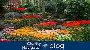 List Of Botanical Gardens Charity Navigator Charity Navigator S Top 10 Tuesday The Best