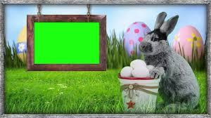 green screen easter bunny frame youtube