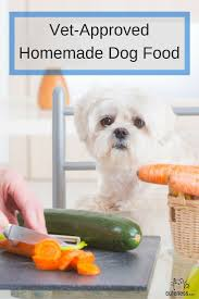 best 25 homemade dog food ideas on pinterest dog food recipes