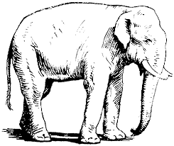 black white elephant pictures free download clip art free