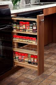 sliding spice rack for cabinet fanciful spice racks kitchen cabinets ideas en spice organizer for