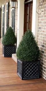 Shrubs For Patio Pots For Front Porch Planters Gardens And Gardening Pinterest