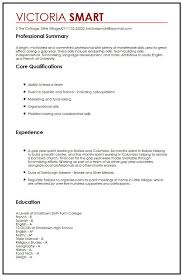 Transferable Skills Resume Example by Cv Example With Gap Year Myperfectcv