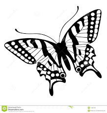 butterfly vector stock vector illustration of background 11062795