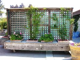 awesome garden box design ideas gallery home design ideas