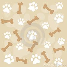 paw prints and pet frames photos images u0026 pictures dreamstime