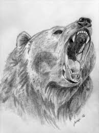 best 25 bear drawing ideas on pinterest bear tattoos animal