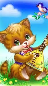 25 shrek cat ideas funny kittens kittens