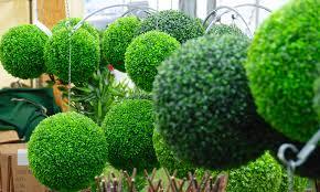 gardening ideas rental house and basement ideas