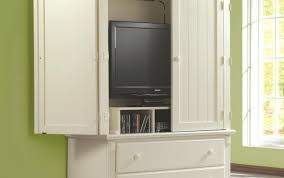 Media Cabinets With Doors Small Cabinets With Doors Home Design Ideas And Pictures