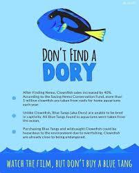 Dory Memes - the best dory memes memedroid